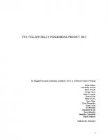 Script YBP 2013