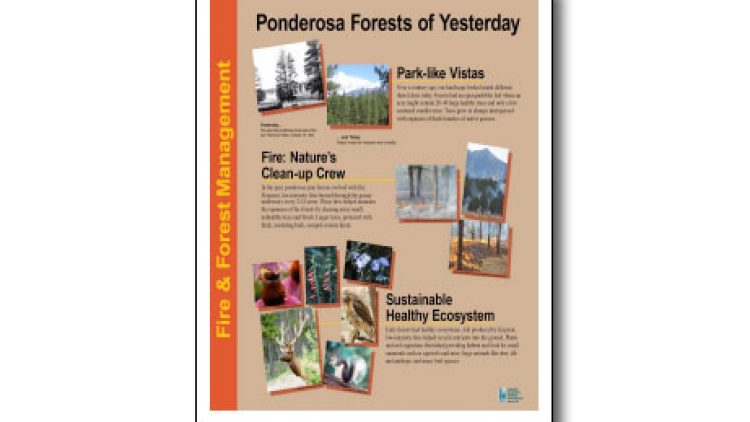 Fire & Forest Management Trail Signage Collection