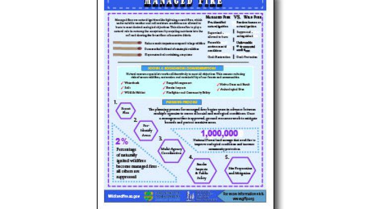 Harvesting Method Fact Sheet – Managed Fire