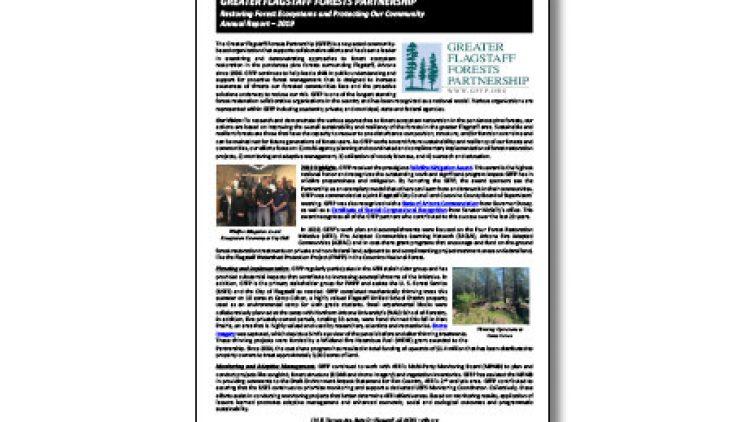GFFP 2019 Annual Report